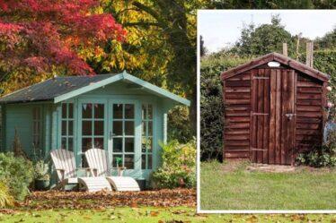 Conversion de cabanon: les meilleurs conseils pour transformer votre abri de jardin terne en une belle maison d'été