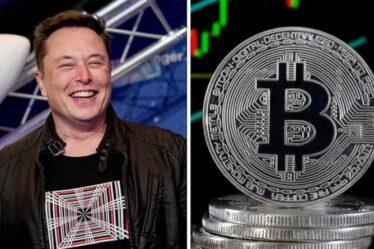 Elon Musk critiqué pour la taquinerie `` Doge-for-Tesla '': `` Début de fin pour Bitcoin ''