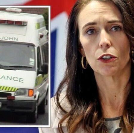 Panique en Nouvelle-Zélande alors que les enfants tombent malades en grand nombre – les experts mettent en garde contre la «dette d'immunité»