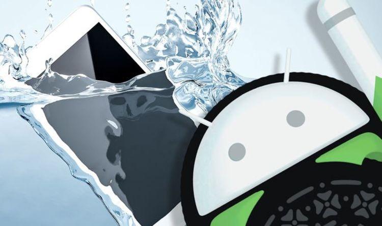 Cette application Android intelligente révélera un secret caché vital sur votre téléphone