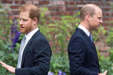 «Épargne à l'héritier», le prince Harry était «frustré» par la famille royale avant l'arrivée de Meghan