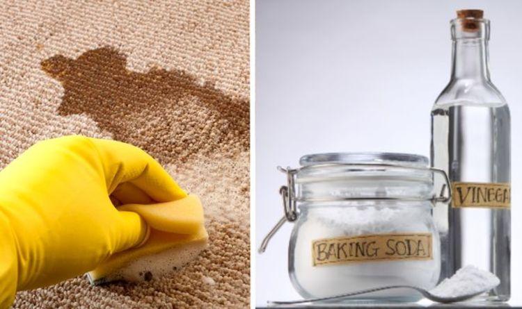 «Est-ce que le tour!»  Les fans de Mme Hinch partagent des moyens naturels de se débarrasser des taches et des odeurs de tapis