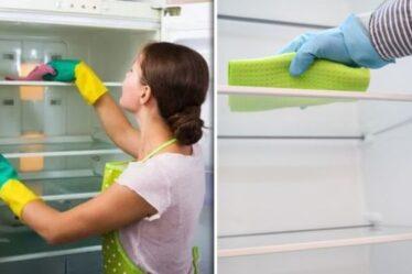«Fait une énorme différence!»  Les fans de Mme Hinch partagent des astuces faciles pour se débarrasser des odeurs de réfrigérateur