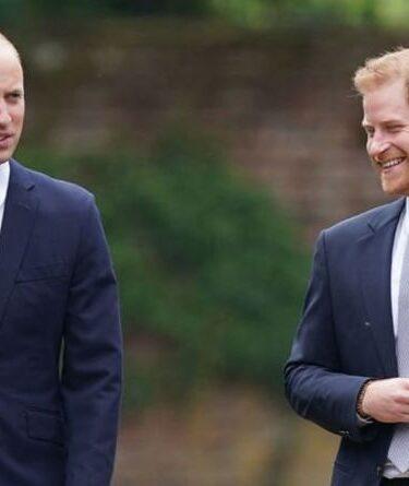 «La querelle n'est pas terminée!»  Harry et William « ont peut-être eu un coaching » pour regarder de près la cérémonie
