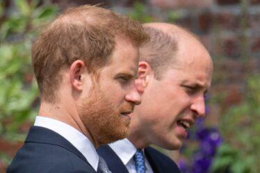 """Le prince Harry fait preuve d'une solidité fraternelle avec le commentaire """"Nous irons bien"""" lors du dévoilement de la statue de Diana"""