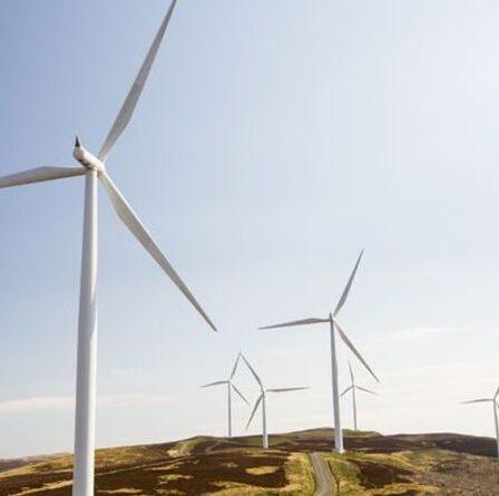 Soumissionner pour faire fonctionner des éoliennes de nouvelle génération pour créer et protéger plus de 1 000 emplois