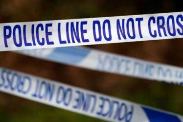 Une fille de 9 ans combat trois hommes masqués qui ont tenté de l'attraper sur un terrain de jeu