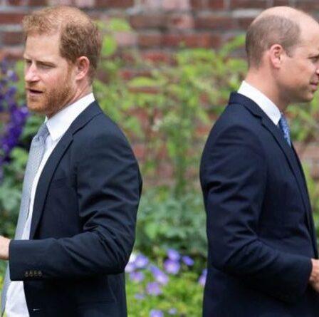 """Le prince William """"très frustré"""" alors que le duc de Cambridge a """"perdu"""" le prince Harry avec le chat d'Oprah"""
