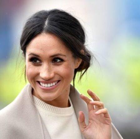 Un fan de Meghan Markle défend une duchesse «incroyable et attentionnée»: «Éloignez la négativité!'