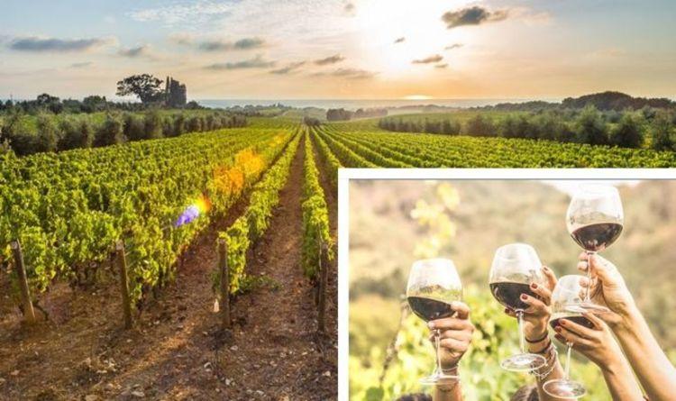 Séjour rempli de vin: réservez ces dix vignobles britanniques les mieux classés, d'une étable à une prison