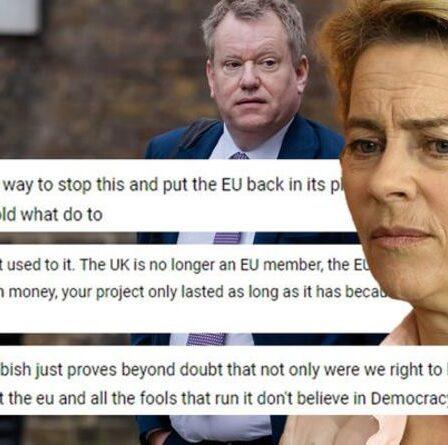 Nous avons eu raison de partir !  Les Britanniques se réjouissent de la sortie de l'UE au milieu de la fureur du traitement Frost