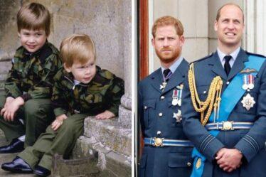 """""""La dissemblance intrigante de Harry et William"""" alors que les enfants l'expliquaient: """"Il pleurait"""""""
