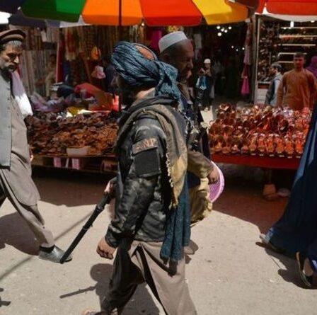 Crise en Afghanistan : l'économie « s'est mise à genoux » alors que la nourriture pourrait s'épuiser d'ici un mois