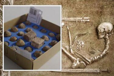 Des archéologues stupéfaits par le contenu de la tombe d'une guerrière viking : « C'est autre chose