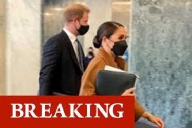 Harry et Meghan rencontrent le secrétaire général de l'ONU avant l'événement de «signalisation virtuelle» de Central Park
