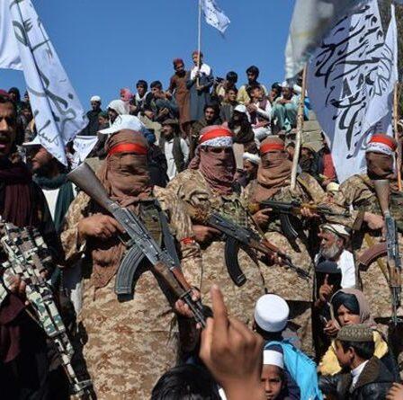 """""""Humiliation"""" Les talibans prévoient d'organiser une cérémonie de prestation de serment à l'occasion de l'anniversaire du 11 septembre"""