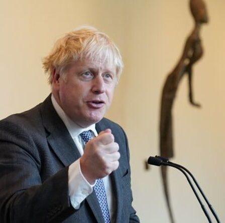 """La Chine, les États-Unis et l'Inde """"très inquiétants"""" boudent la réunion de Boris Johnson sur le climat"""
