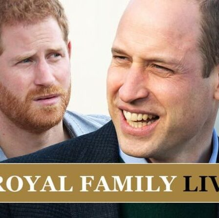 Le prince Harry et le prince William «peu probable» de mettre fin à la rupture avant la réunion royale l'année prochaine