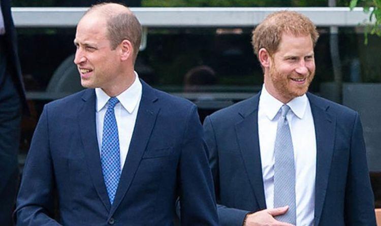 Le prince Harry et le prince William pourraient être réunis par le film du prince Philip – «Peut être une étincelle»