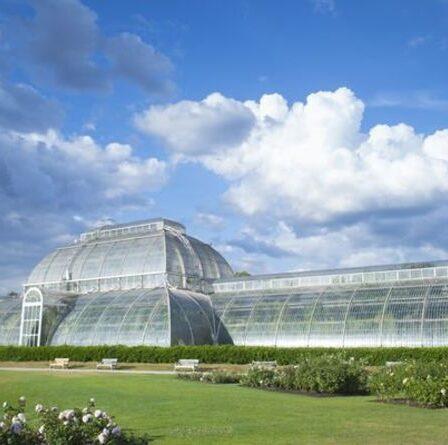 Treize jardins britanniques nommés les meilleurs pour une journée dans la liste des 50 meilleurs jardins d'Europe - lequel est arrivé en tête?
