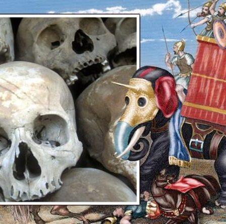 """Des archéologues stupéfaits par la découverte """"fascinante"""" d'un ancien """"génocide"""" romain"""