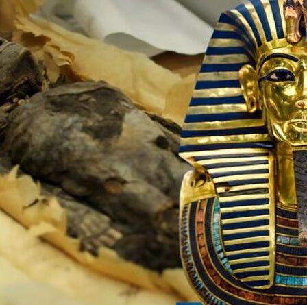 """Découverte """"extraordinaire"""" dans l'Egypte ancienne de """"rares petites filles momifiées"""" dans la tombe du roi Tut"""