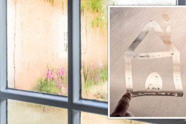 Comment arrêter la condensation sur les fenêtres : les CINQ façons de garder vos fenêtres dégagées