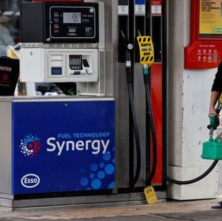 Essence E10: les conducteurs ont mis en garde contre le stockage de carburant «à risque» car la durée de conservation peut différer en fonction de la chaleur