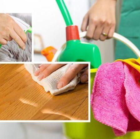 Hack de nettoyage DEBUNKED: Pourquoi le vinaigre blanc n'est PAS un nettoyant tout usage