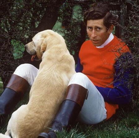 Le prince Charles forcé d'abandonner son « vieux fidèle » chien après que Diana a dit qu'il était trop « puant »