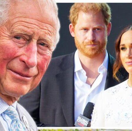 Les Royals ripostent!  Charles dirigera la transformation dramatique de Firm après le Megxit