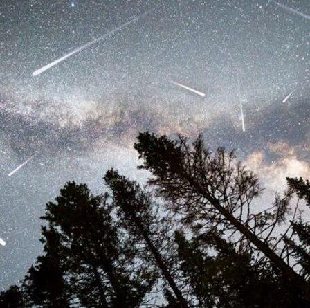 Pluie de météores Orionid: les Britanniques se préparent pour une exposition d'étoiles filantes «extra spéciale» CE SOIR