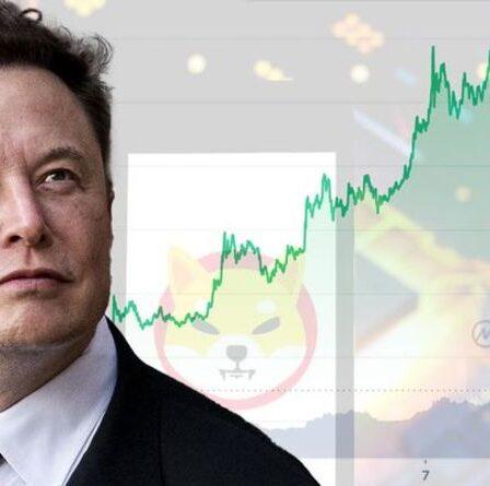 Prévision de prix Shiba Inu: Crypto doit TRIPLER le taux de surtension pour atteindre 1 $ - Analyse d'experts
