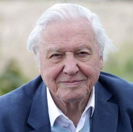 Sir David Attenborough appelle à une action urgente pour protéger les «richesses de notre planète»