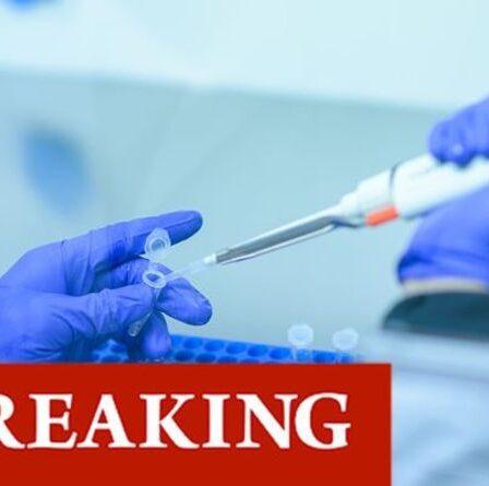 «Un grand pas en avant» dans la lutte contre Covid en tant qu'anticorps «très puissant» trouvé pour éliminer le virus